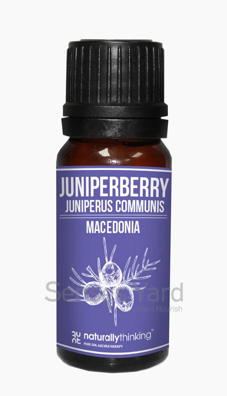 Juniperberry Essential Oil / 杜松果精油的功效:舒緩濕疹症狀/舒緩風濕及痛風疼痛/舒緩精神疲憊。Quality Essential Oil from Naturallythinking.