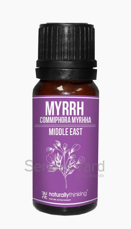 Myrrh Essential Oil / 沒藥精油的功效:舒緩鼻喉粘膜炎、支氣管炎、感冒和喉嚨痛症狀/抗炎/抗皺修復/鎮靜安神。Quality Essential Oil from Naturallythinking.