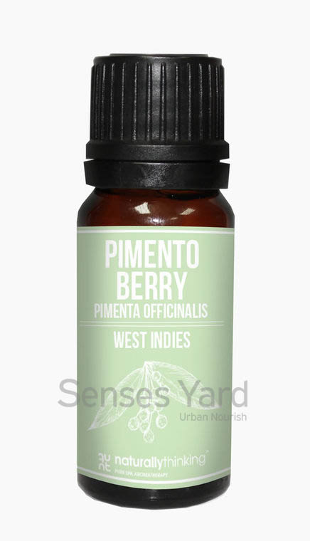 Pimento Berry Essential Oil / 多香果精油的功效:緩解噁心及其他疼痛/舒緩緊張情緒及壓力。Quality Essential Oil from Naturallythinking.