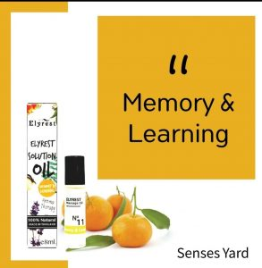 Elyrest Solution Oil Roll-On No.11 Memory & Learning/改善記憶及學習香薰精油 SENSESYARD
